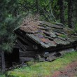 An old hut — Stockfoto