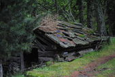 An old hut — Stock Photo
