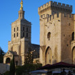The popes palace in avignon France — Stock Photo #10728146