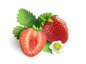 Strawberries with leaves and flower. Isolated on a white background — Stock Photo