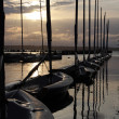Stock Photo: Moored Dinghies at La Rive