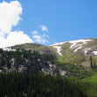 Stock Photo: Above Treeline