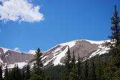 The treeline at the Continental Divide. — Stock Photo