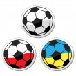 Football euro cup 2012 balls — Stock Vector