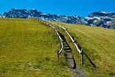 Dolomites mountain trail and fence on the lawn — Stock Photo