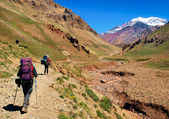 Trekking in the Andes in South America — Stock Photo