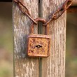 Royalty-Free Stock Photo: Vintage rusty padlock