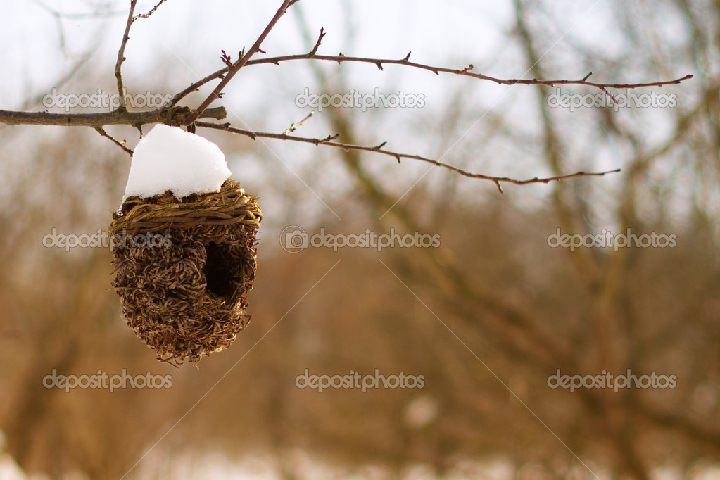Abandoned bird house covered with snow in winter.  — Stock Photo #10680914