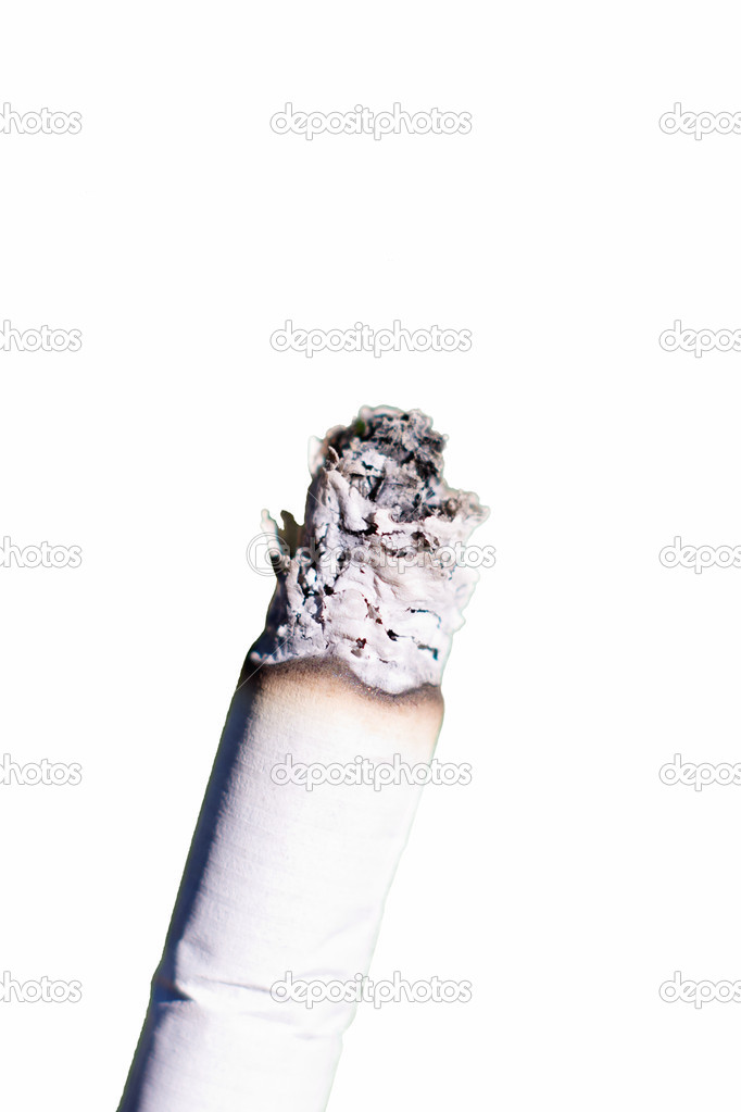 Macro of cigarette isolated on white   Stock Photo #10681018