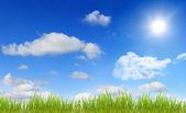 Panorama of sky sun and grass — Stock Photo