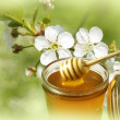 Stock Photo: Honey and flowers
