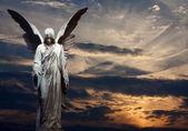 Angel a západem slunce pozadí — Stock fotografie