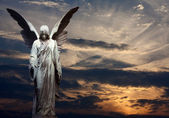 Angel and sunset background — Stock Photo