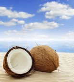 Coconut on beach — Stock Photo