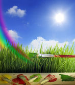 Brushes colors of nature with rainbow and sun — Stock Photo