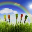 Rainbow and brushes painting nature — Stock Photo