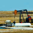 Stock Photo: Oil Well in Prairies