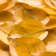 Leafage - 