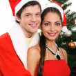 Christmas — Stock Photo #10709285