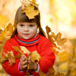 Autumn joy — Stock Photo #10713226