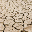 Stock Photo: Dry ground