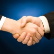 Business handshake — Stock Photo #10715777