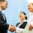Business handshake — Stock Photo #10716196