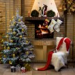 Waiting for Christmas — Stock Photo #10719089