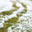 Snow cover — Stock Photo #10730053