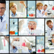 Laboratory work - 