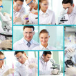Scientific collage — Stock Photo #10732695