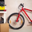 Mountain bike in garage - Stock fotografie