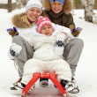 Family on sledge — Stock Photo #10733402
