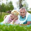 Stock Photo: Couple on the lawn