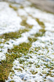Coltre di neve — Foto Stock