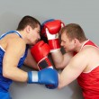 Fistfight — Stock Photo