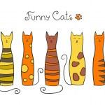 Постер, плакат: Five cats