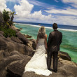 Bride and groom looking out over the ocean — Stock Photo