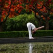 Stock Photo: Yogwith reflection in water
