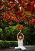 Yoga Lotus — Stock Photo