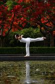 Yoga Balance — Stock Photo