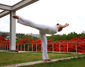 Yoga standing balance — Stock Photo
