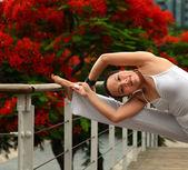 Exercício de manhã — Foto Stock