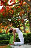 Yoga camel pose — Stock Photo