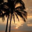 Постер, плакат: Hawaiian Sunset