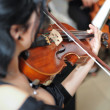 Stock Photo: Violinist: Musiciplaying violin at opera