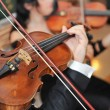 The violinist: Musician playing violin at the opera - Stock Photo