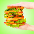 thumbnail of Giant sandwich against gradient background