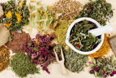 Healing herbs on wooden table, herbal medicine