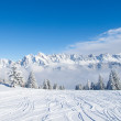 thumbnail of Winter in alps